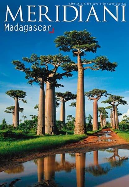 MERIDIANI N°203 MADAGASCAR 11/2011-0
